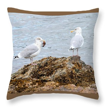Throw Pillow featuring the photograph My Crab Go Away by Debbie Stahre