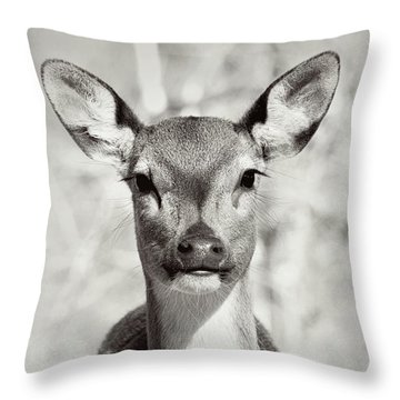 Throw Pillow featuring the photograph My Dear by Jessica Brawley