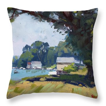 My Demonstration At Plein Air Workshop At Mayors Park Throw Pillow