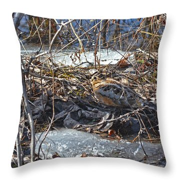 My Easter Woodcock Throw Pillow