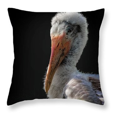 My First Sitting Throw Pillow by Cyndy Doty