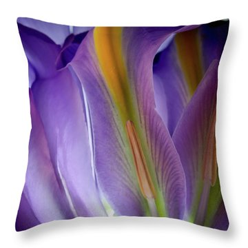 My Forever Iris Throw Pillow