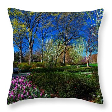 My Garden In Spring Throw Pillow by Diana Mary Sharpton