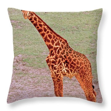 Throw Pillow featuring the photograph My Giraffe by Howard Bagley