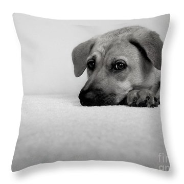 My Girl Throw Pillow by Dana DiPasquale