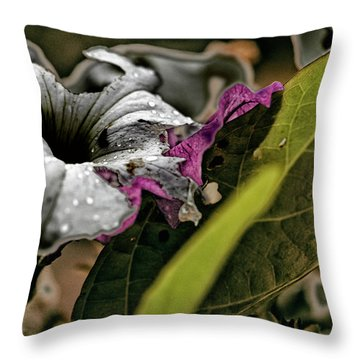 My How Your Beauti Is Evolving Throw Pillow