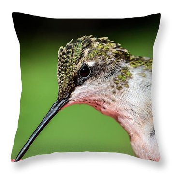 My Hummingbird Throw Pillow