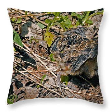 My Instinct Told Me To Go And Hide Throw Pillow