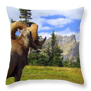 My Kingdom Throw Pillow by Marty Koch
