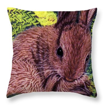 My Little World Throw Pillow by Jan Amiss