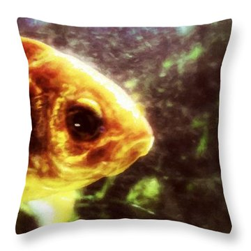 My Littlest Fish Throw Pillow
