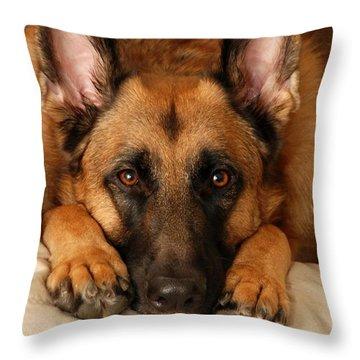 My Loyal Friend Throw Pillow by Angie Tirado