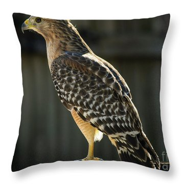 My Lucky Hawk Throw Pillow