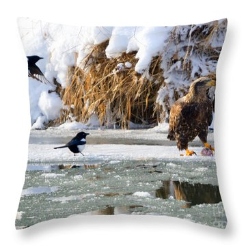 My Lunch Throw Pillow by Mike Dawson
