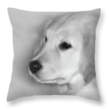 My Mission Is Love Throw Pillow by Cathy  Beharriell
