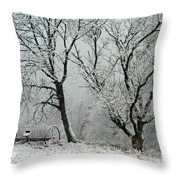 My Morning Walk  Throw Pillow