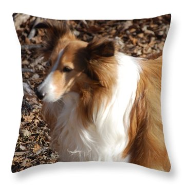 My New Best Friend Throw Pillow by David Lane