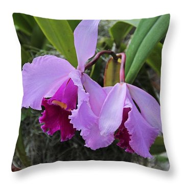 Throw Pillow featuring the photograph My Orbit by Michiale Schneider