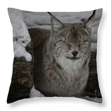 Throw Pillow featuring the photograph My Robert Bateman by Brad Allen Fine Art