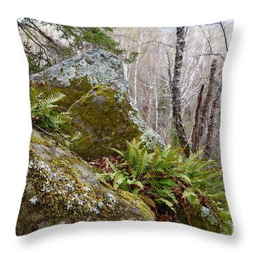 Throw Pillow featuring the photograph My Rocky Mountain High by Sandra Updyke