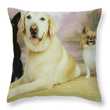 My Son's Three Dogs Throw Pillow