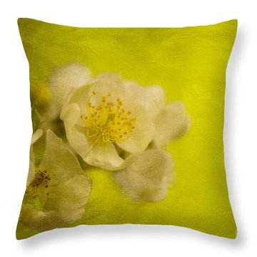 My Sweet Wild Rose Throw Pillow by Lois Bryan
