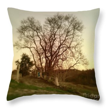 Throw Pillow featuring the photograph My Tree Has A Soul  by Delona Seserman