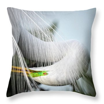 My Veil Of Secrecy Throw Pillow