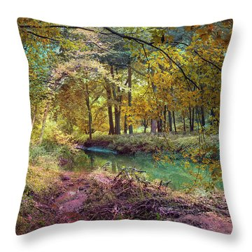My World Of Color Throw Pillow