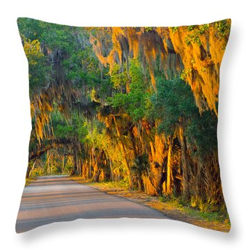 Myakka Canopy Road At Sunset Throw Pillow