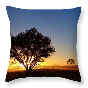 Myakka Sunrise Throw Pillow