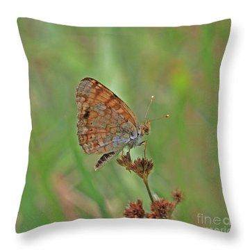 Mylitta Crescent Throw Pillow