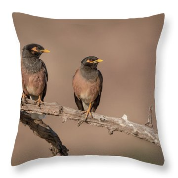 Myna Pair Throw Pillow