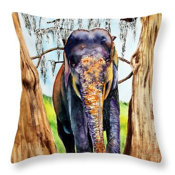 Mysore Throw Pillow by Maria Barry