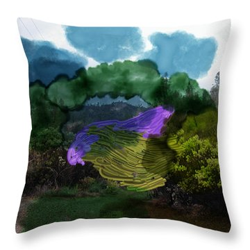 Mysteries In The Chapparal Throw Pillow