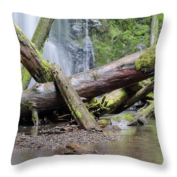 Mysteries In The Rainforest Throw Pillow