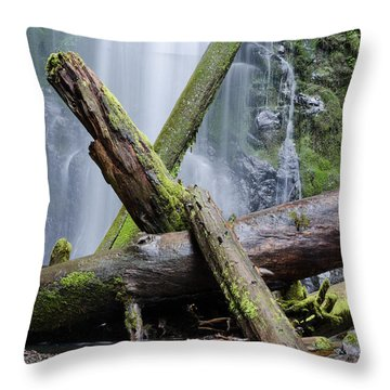 Mysteries In The Rainforest No. 2 Throw Pillow