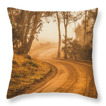 Mysterious Autumn Trail Throw Pillow