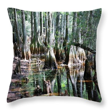 Mysterious Cypress Swamp Throw Pillow