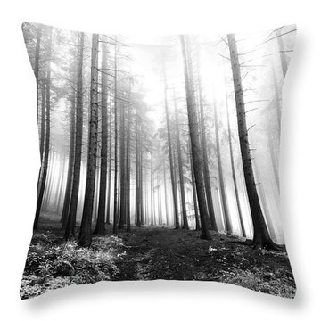Mysterious Forest Throw Pillow by Michal Boubin
