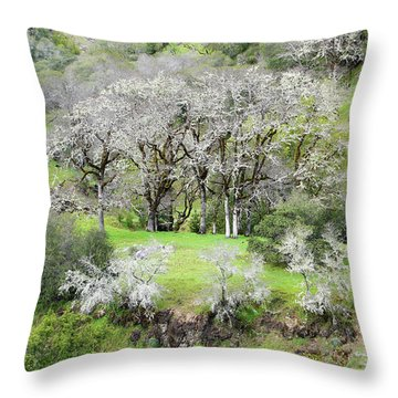 Mysterious Landscape In Sonoma County Throw Pillow
