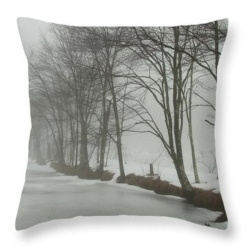 Mysterious Winter  Throw Pillow by Karol Livote