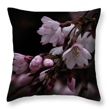 Throw Pillow featuring the photograph Mystery Among The Cherries by Cathy Donohoue