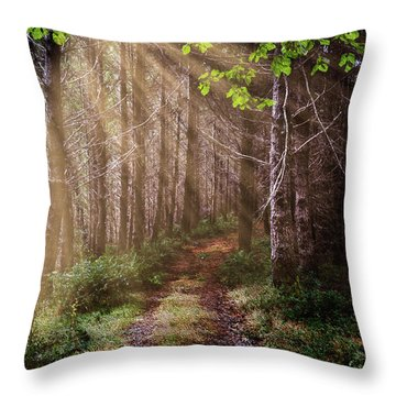 Throw Pillow featuring the photograph Mystery At Dawn by Debra and Dave Vanderlaan