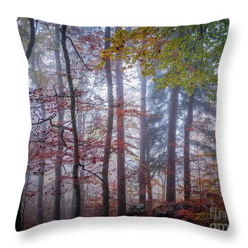 Throw Pillow featuring the photograph Mystery In Fog by Elena Elisseeva