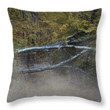 Throw Pillow featuring the photograph Mystery In The Fall by Skip Willits