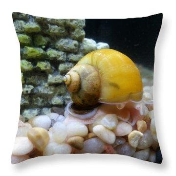 Mystery Snail Throw Pillow