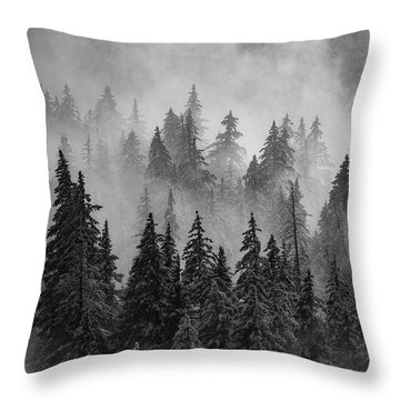 Throw Pillow featuring the photograph Mystic  by Dustin LeFevre