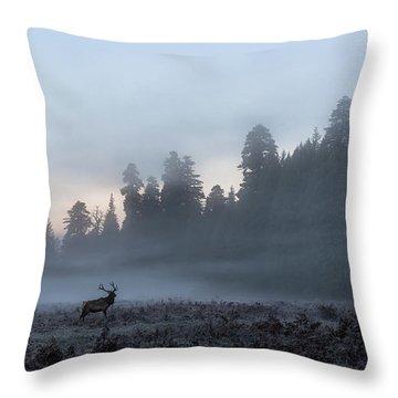 Mystic Elk Throw Pillow