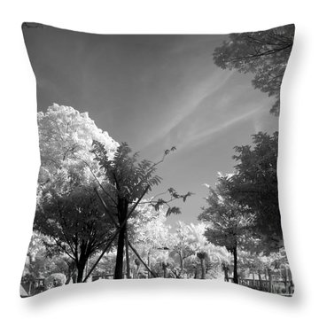 Mystic Park Throw Pillow